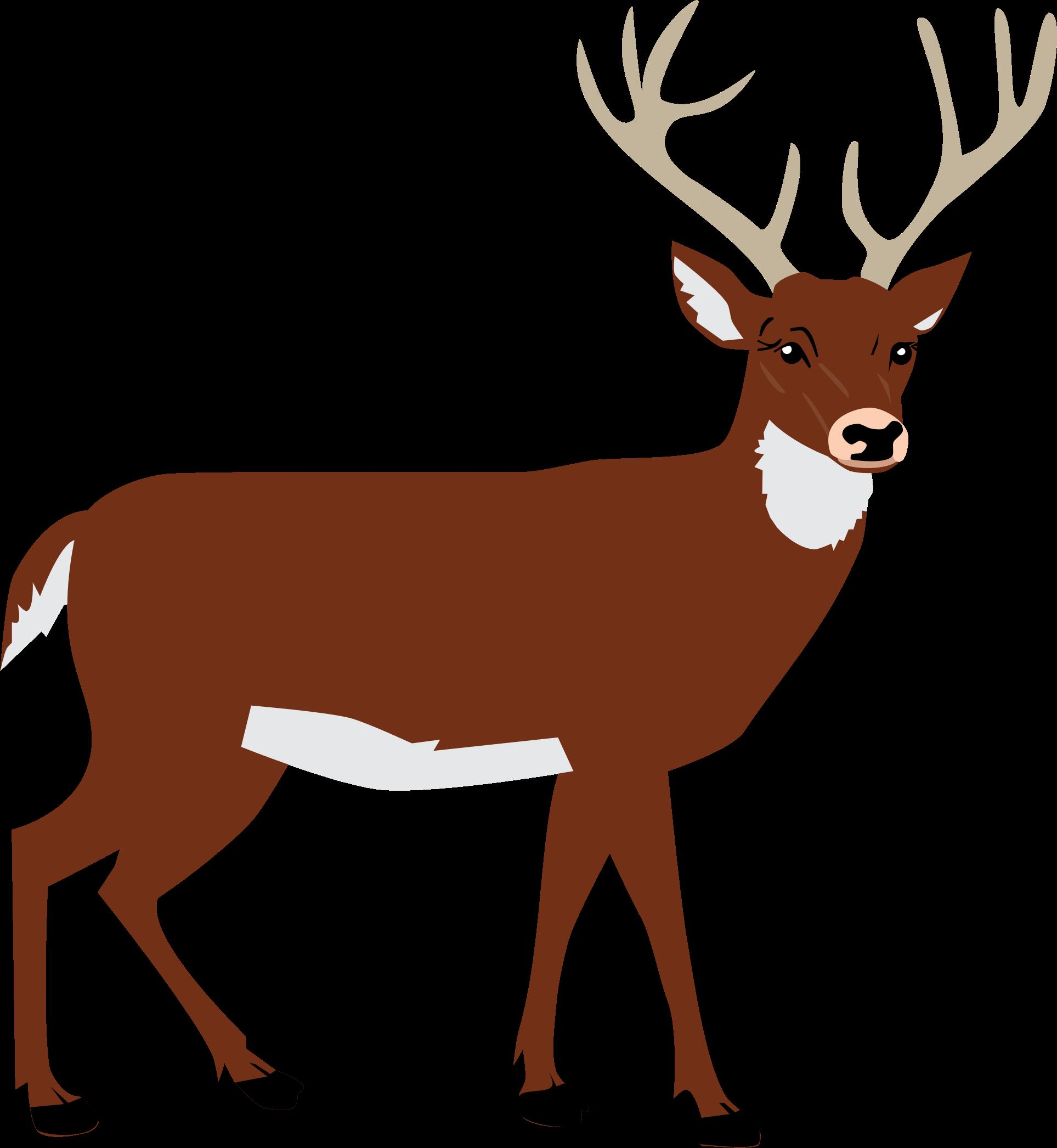 Male deer big image. Clipart png reindeer