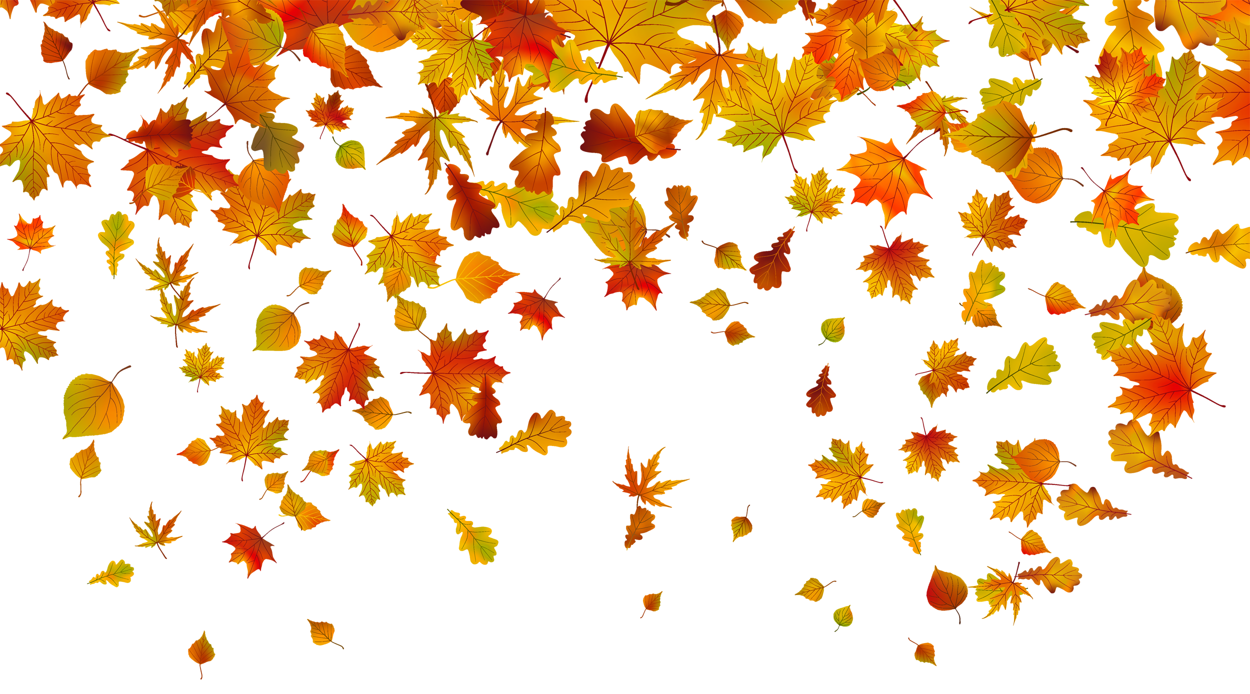 Fall leaves border png.  collection of clipart