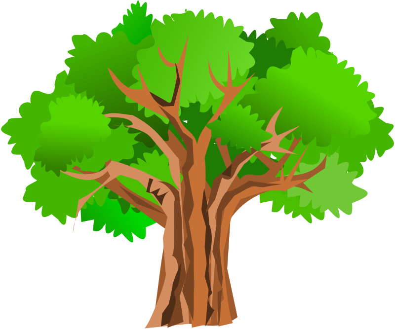 picture clipart tree
