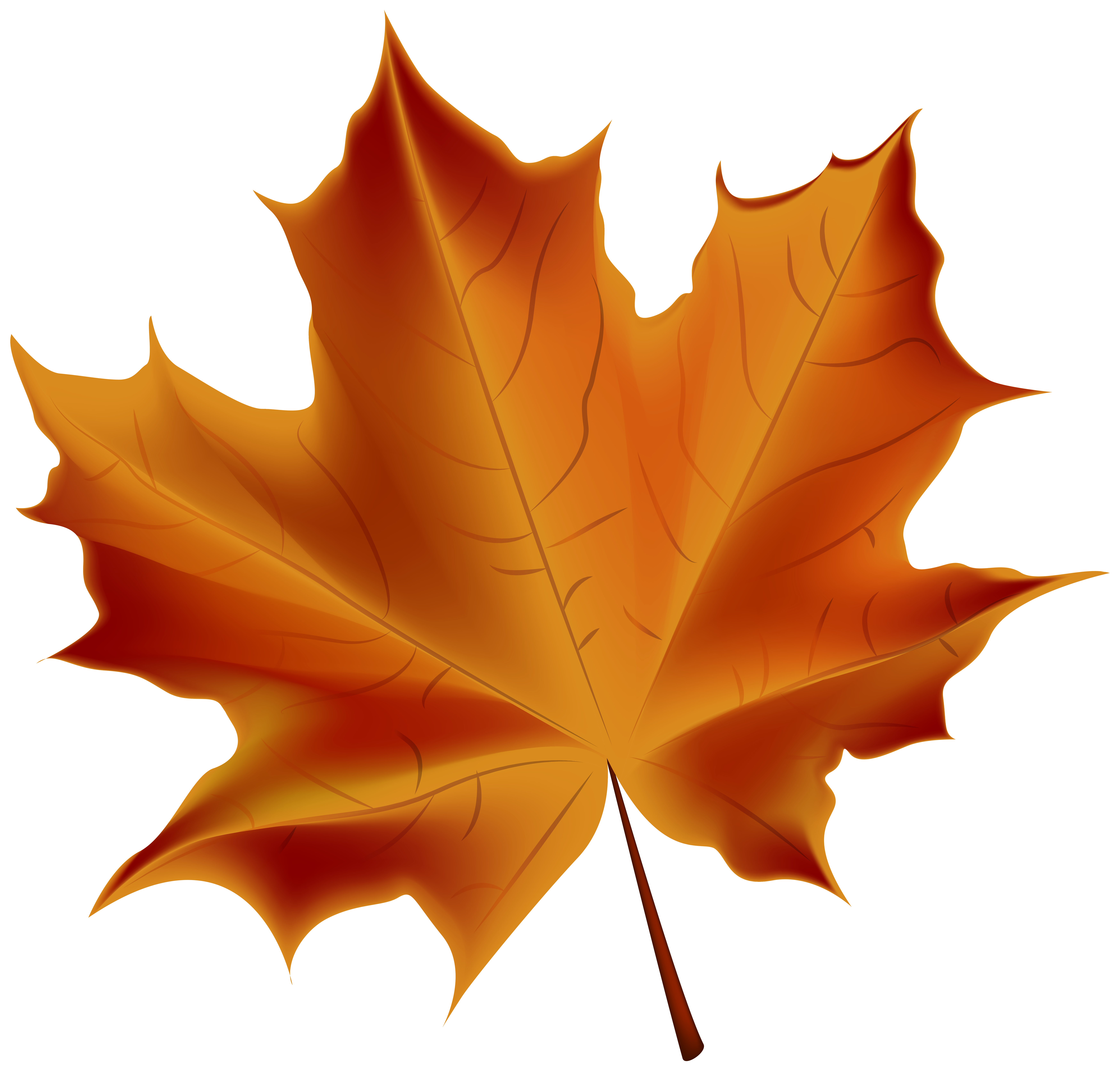 Clipart fall family. Beautiful red autumn leaf