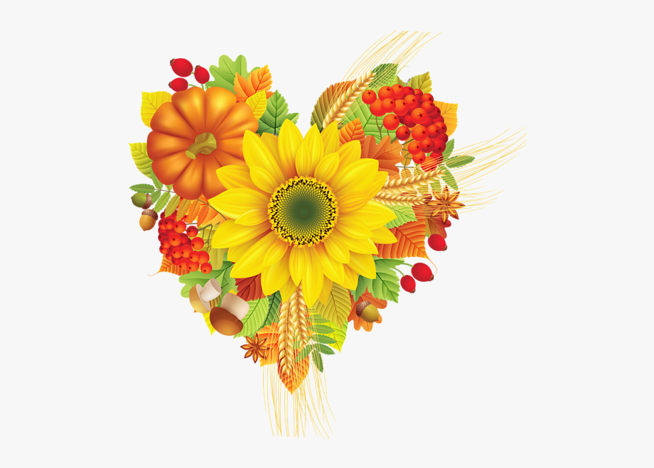 Clipart fall flower. Decoration thanksgiving flowers