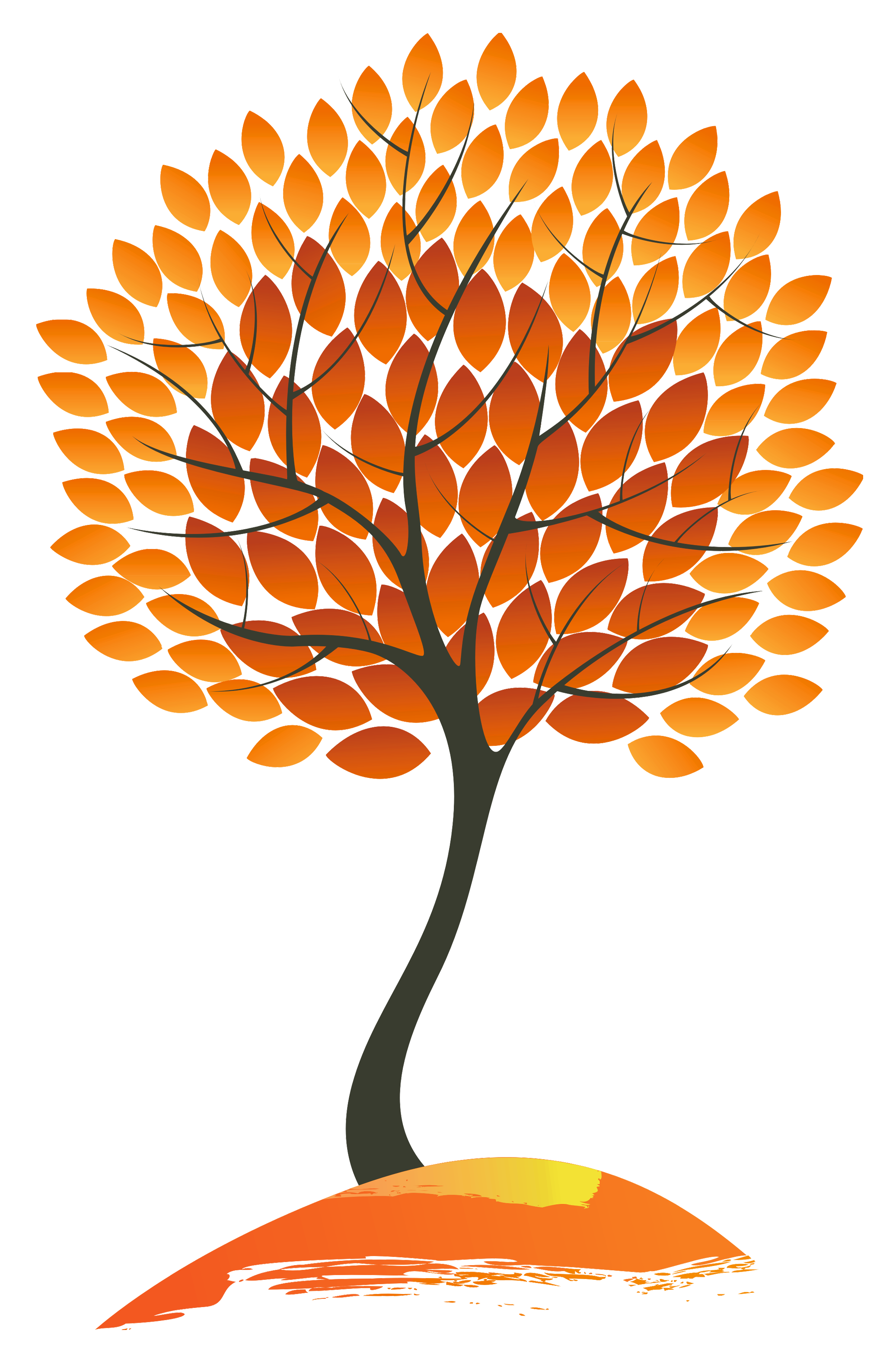 collection of tree. Clipart fall group