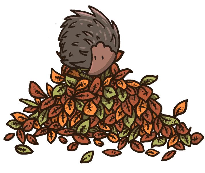 Hedgehogs in your garden. Clipart sleeping hedgehog