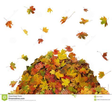 Clipart fall pile fall leaves. Leaf clip art falcones