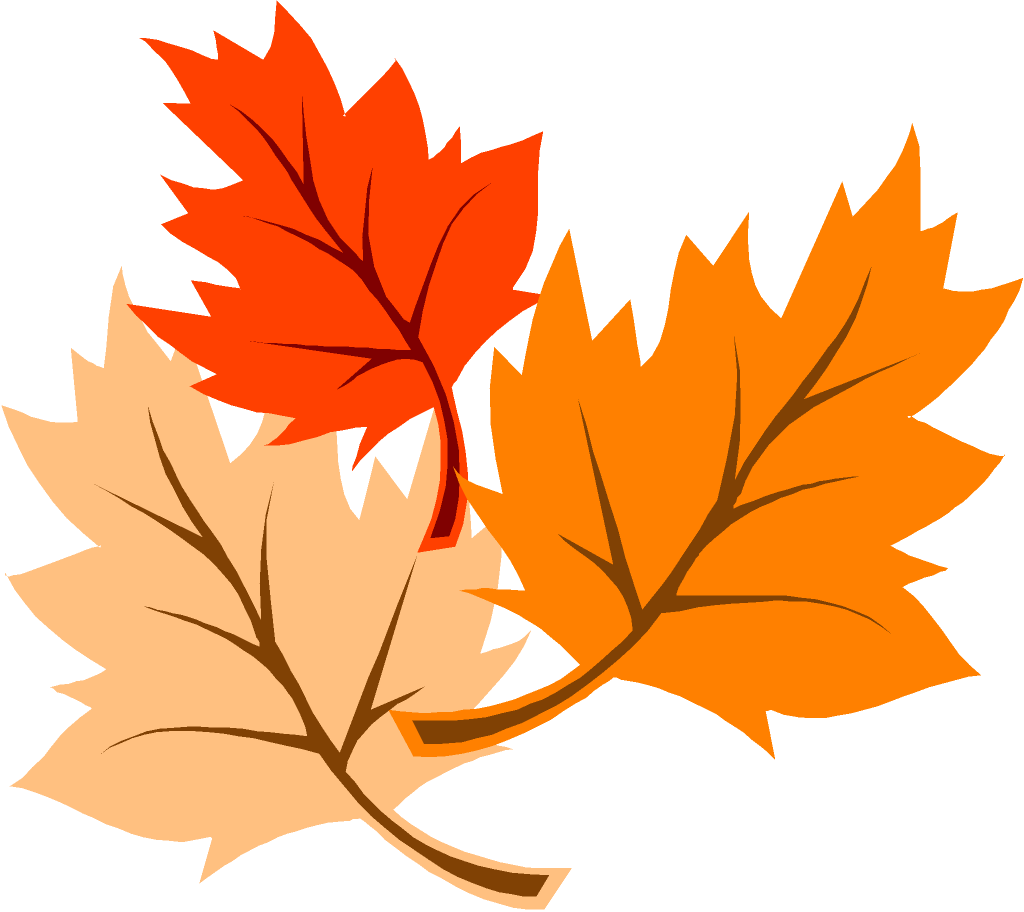 Fall leaves . Clipart leaf animation