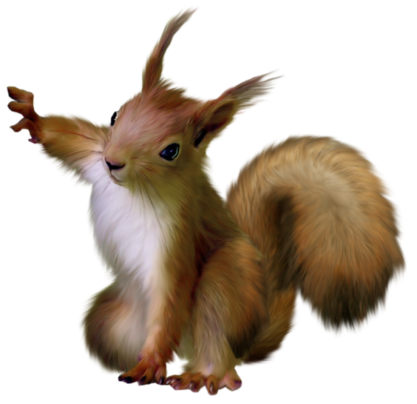 Painted Squirrel Clipart
