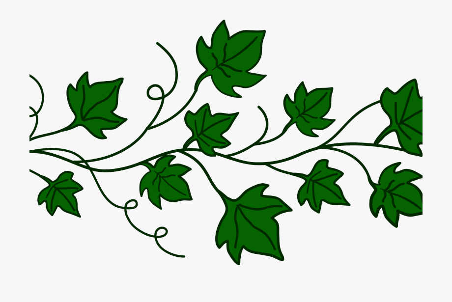 Pumpkin leaves stock techflourish. Clipart fall vine