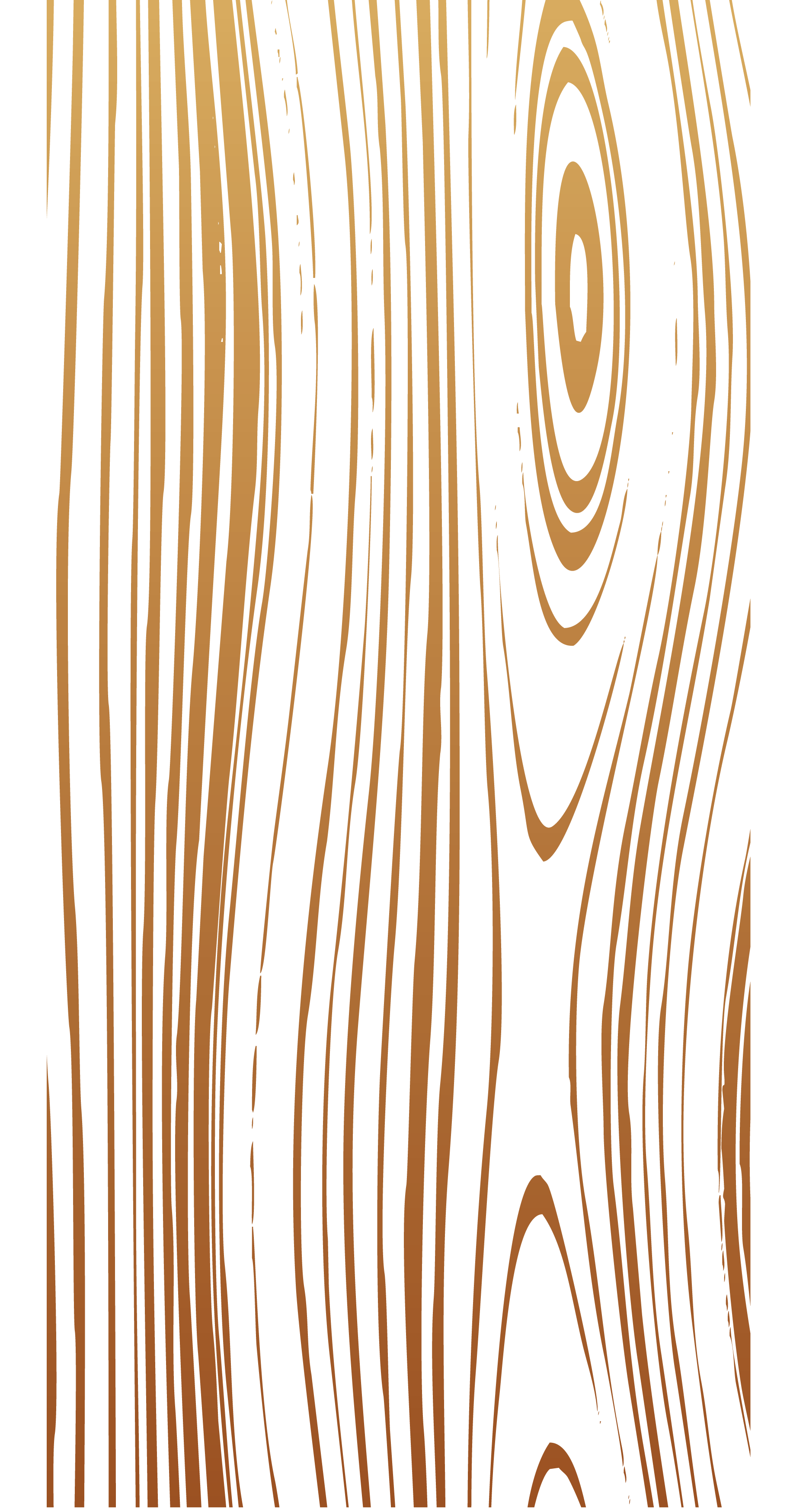 Transparent wood effect png. Clipart fall woods