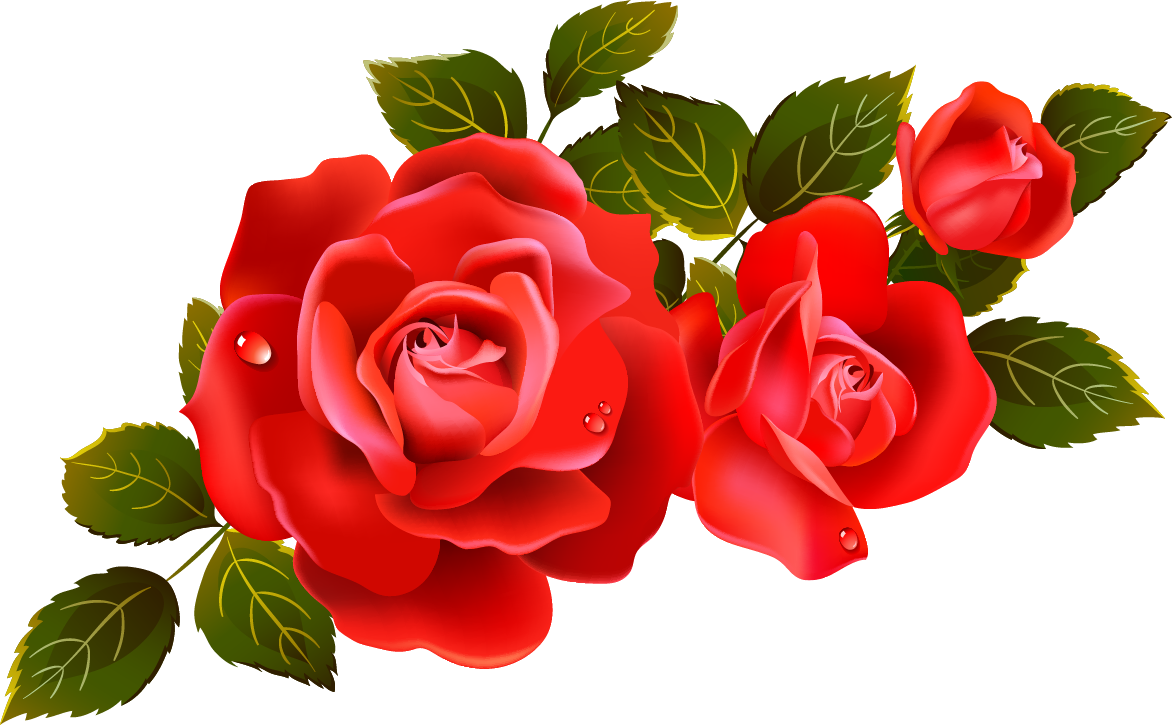 Large red roses element. Filigree clipart phool