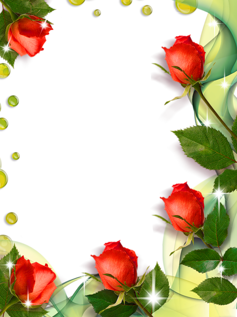 Beautiful transparent photo frame. Clipart roses template