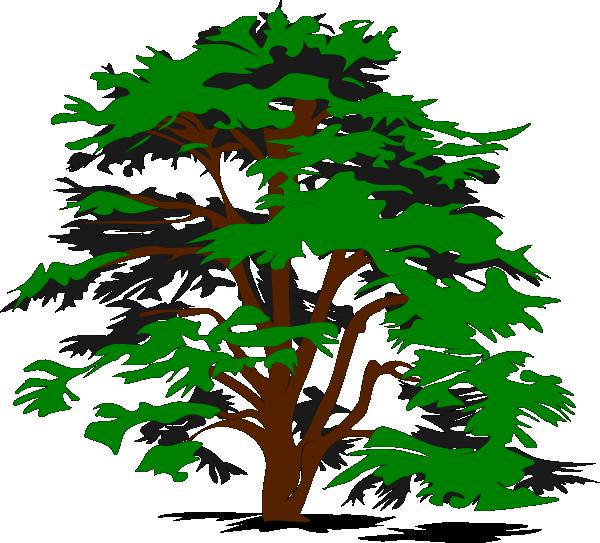 Panda free images familytreeclipart. Clipart tree family tree