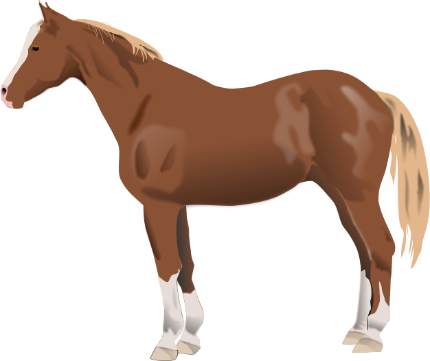 Family clipart horse. Download clip art free