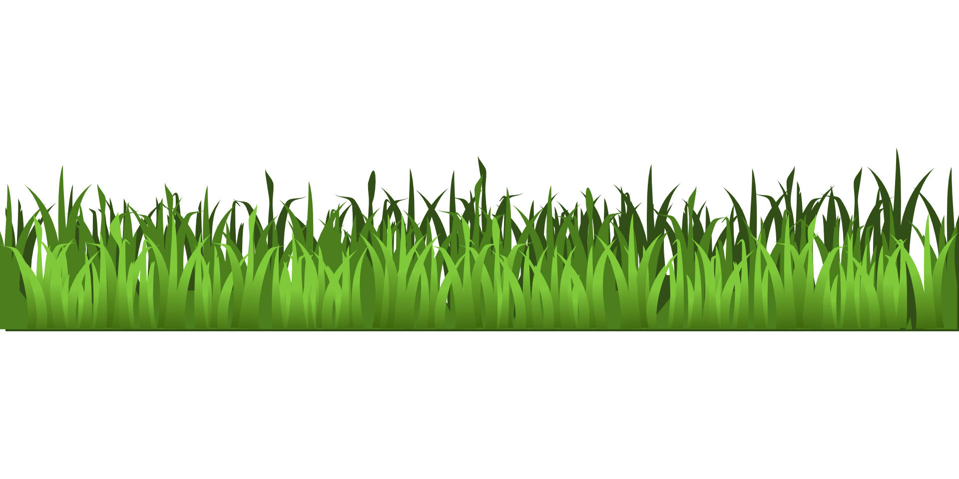 Meadow green isolated stock. Clipart park grass