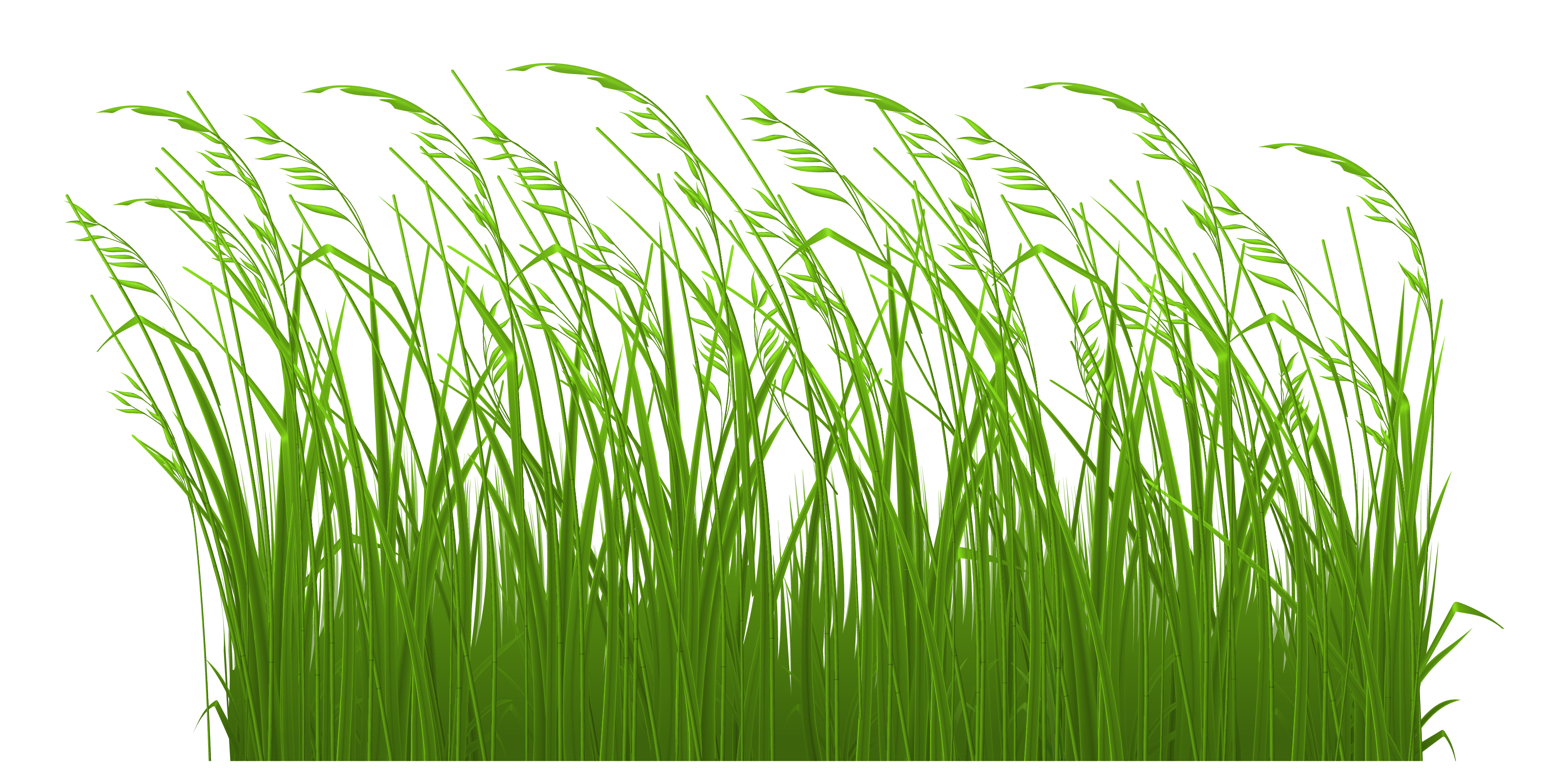 Free grass clip art. Gardening clipart beautiful surroundings