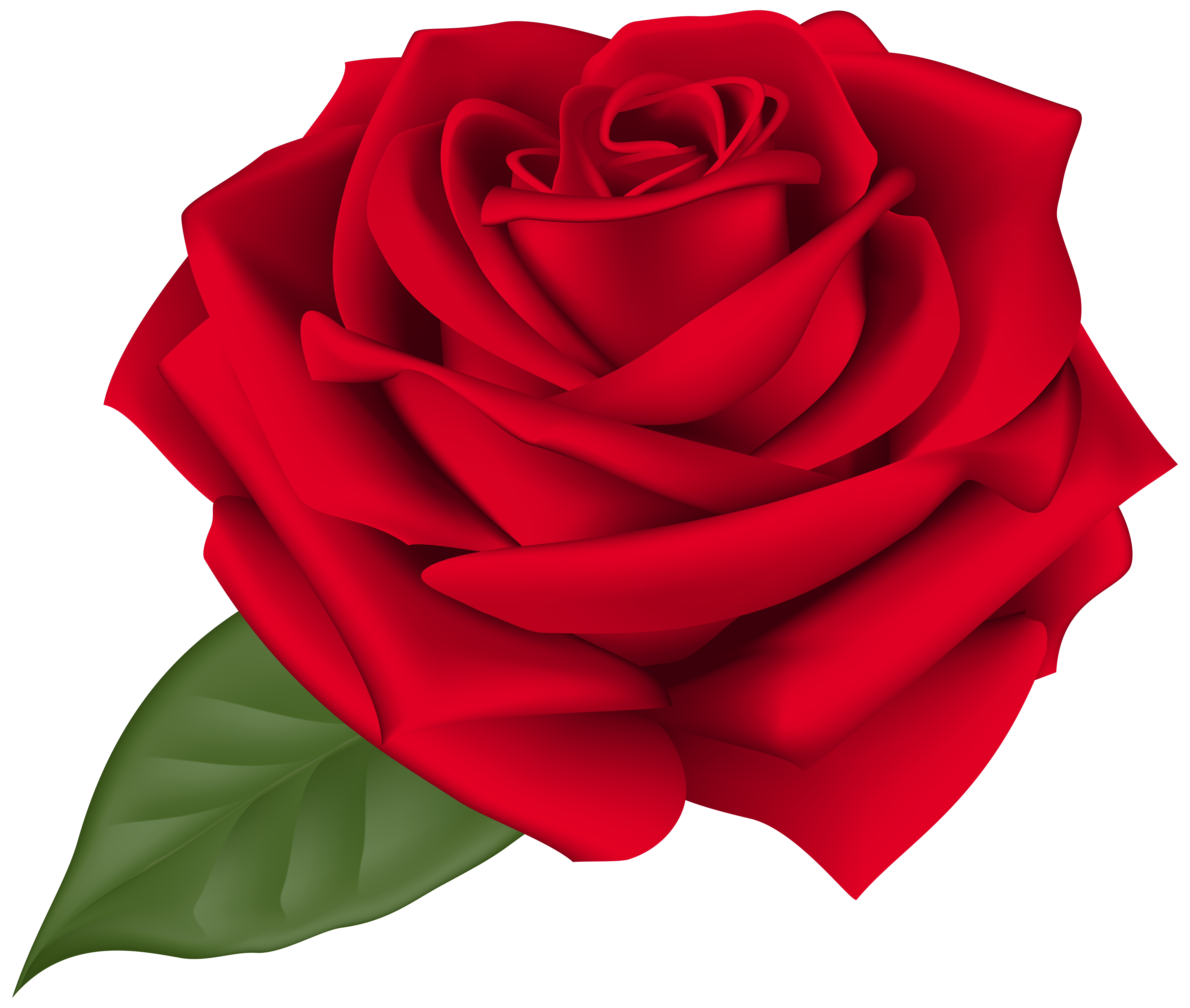 Clipart rose transparent background. Red png clip art