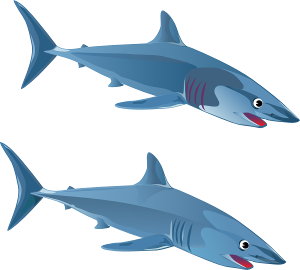 Clipart football shark. Blue clip art at