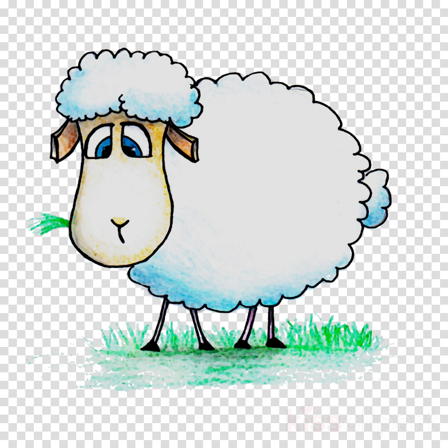 Illustration cattle . Sheep clipart family