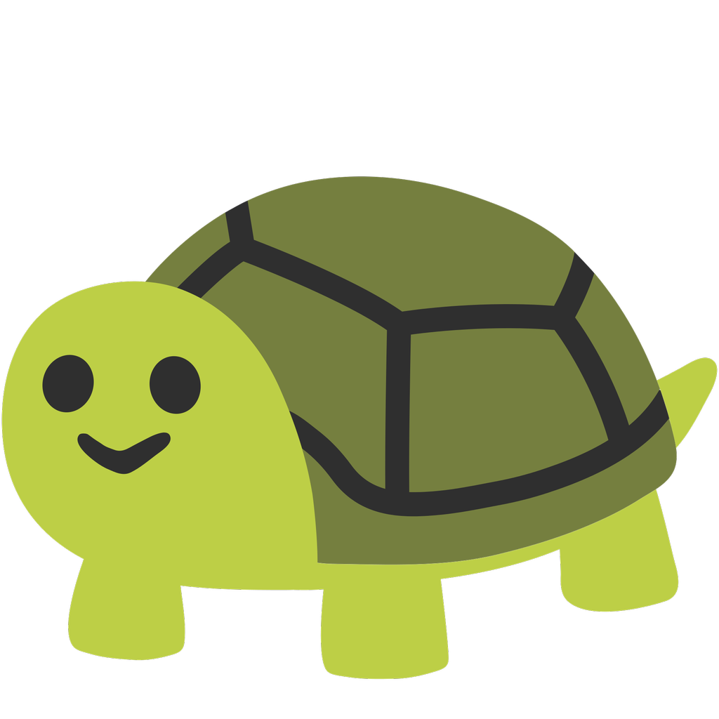 Shy clipart turtle. Ceafufjuuaa eky png large