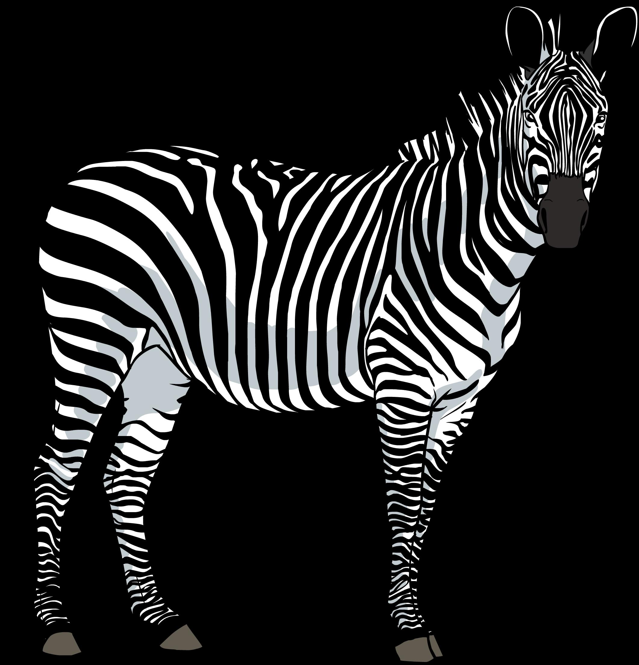 clipart zebra family