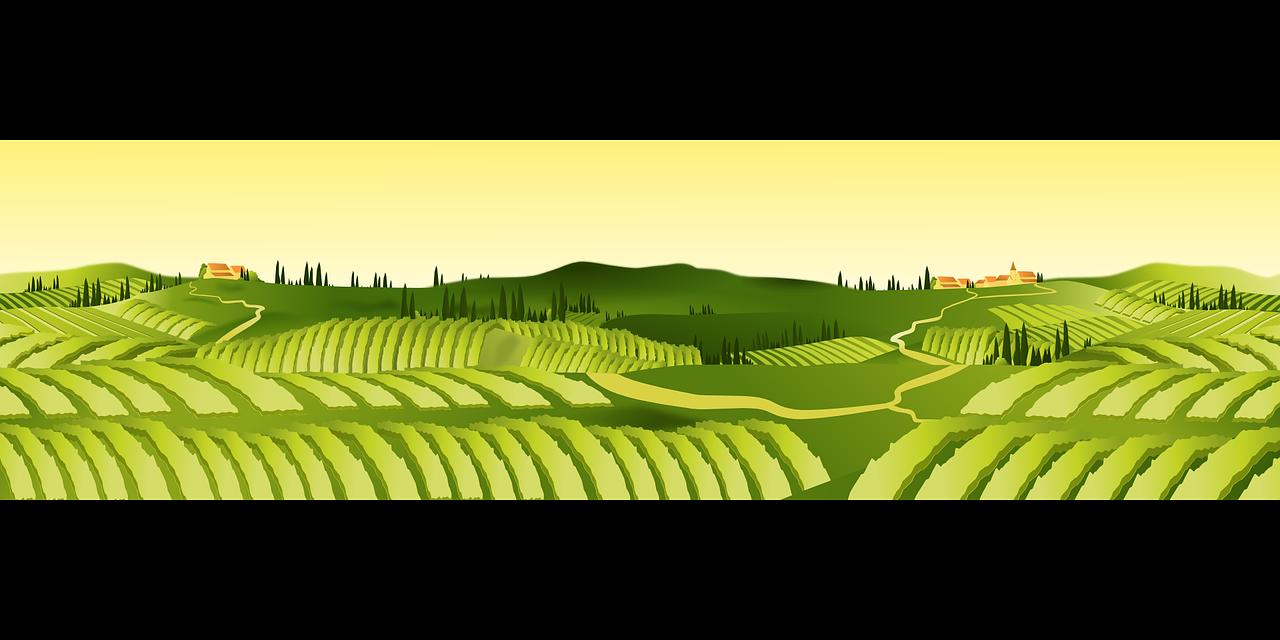 land clipart crop field