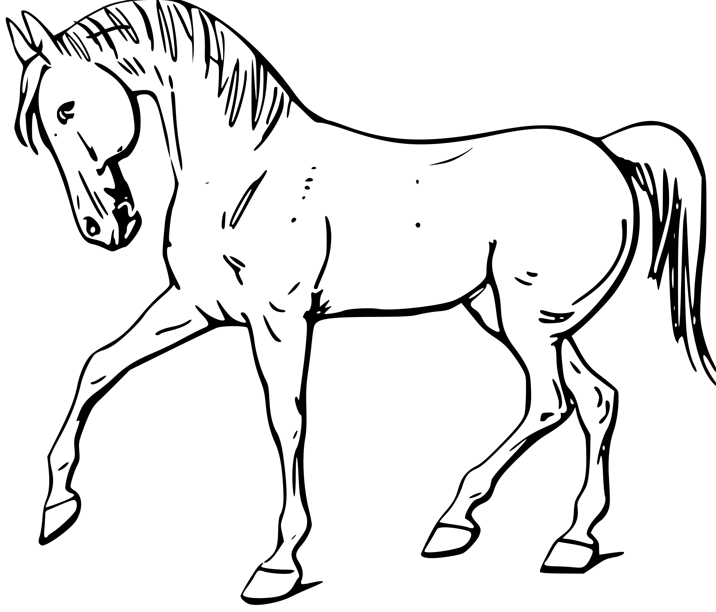Drawing outlines at getdrawings. Kids clipart horse
