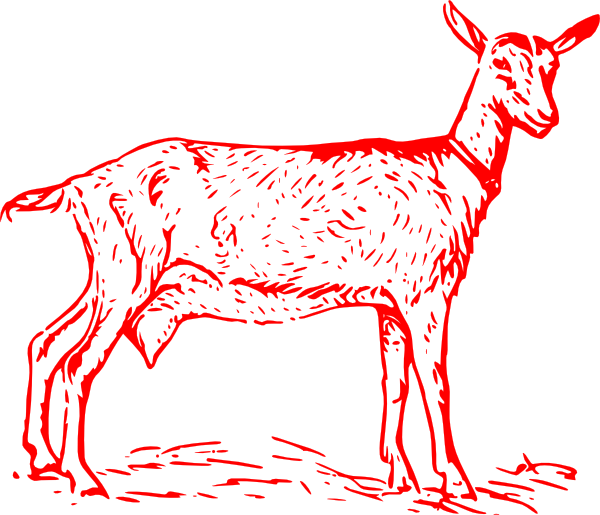 Red clip art at. Outline clipart goat
