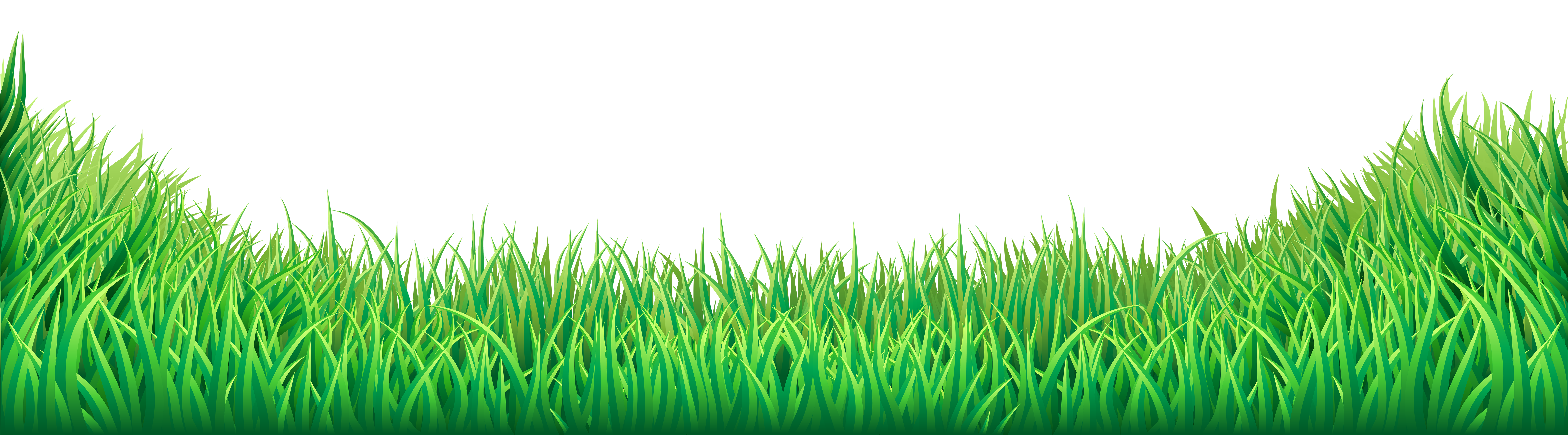Clipart grass frame. Png transparent images pluspng