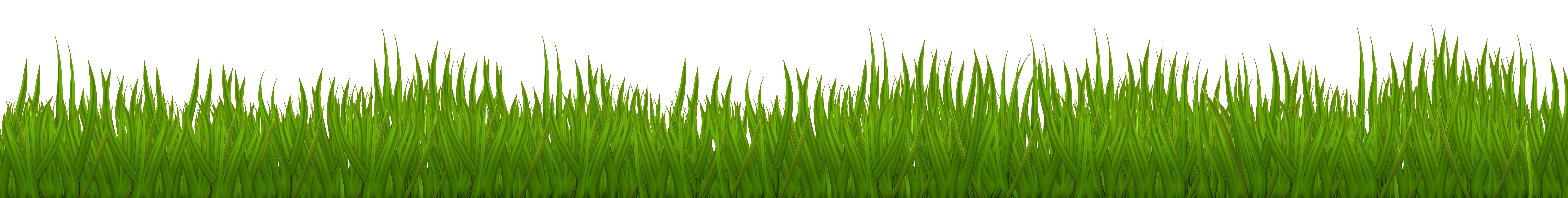 Clip art image clipart. Grass vector png
