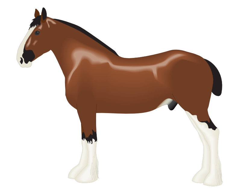 Clipart horse farm animal.  collection of high