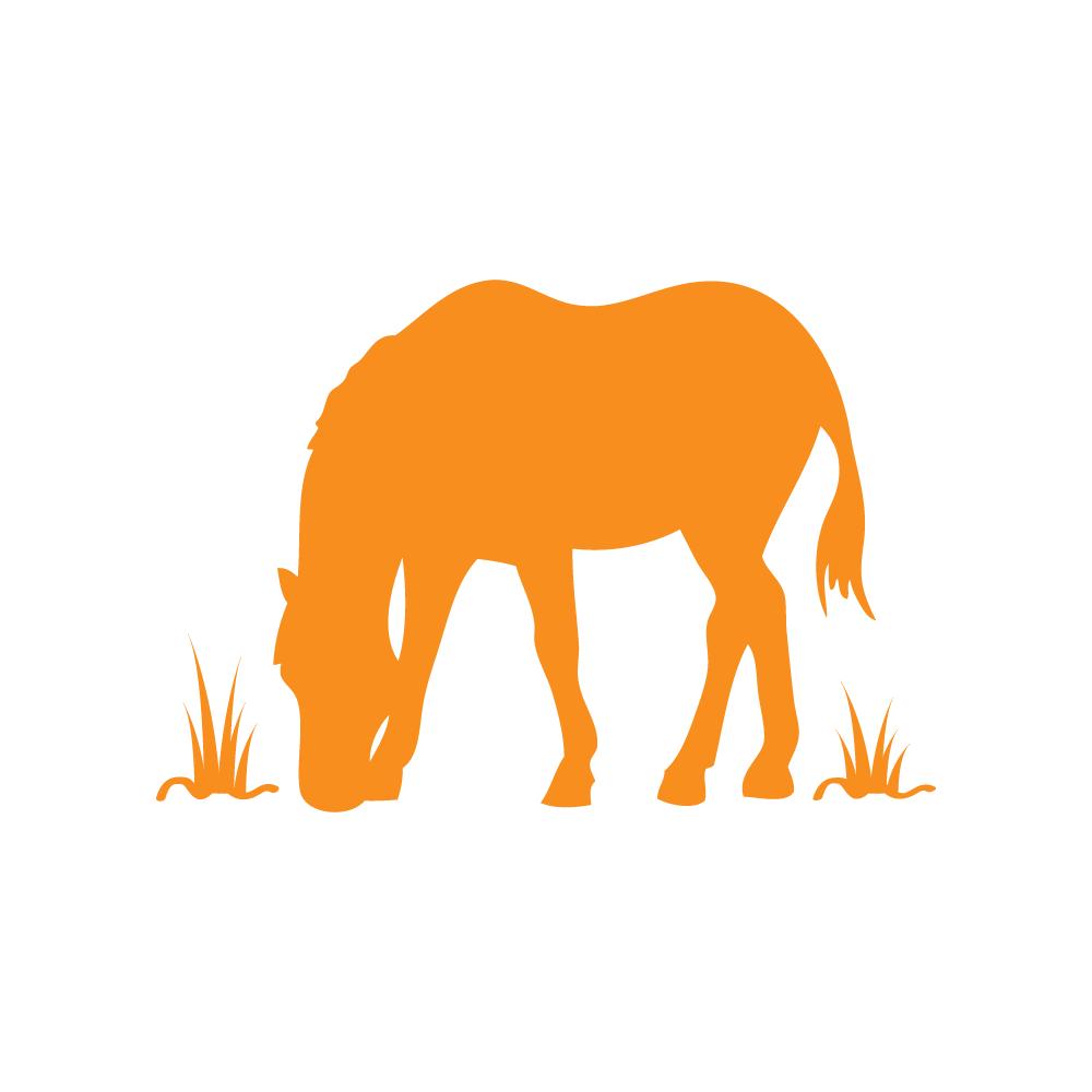 Farm clipart horse farm. Volunteer roles corral riding