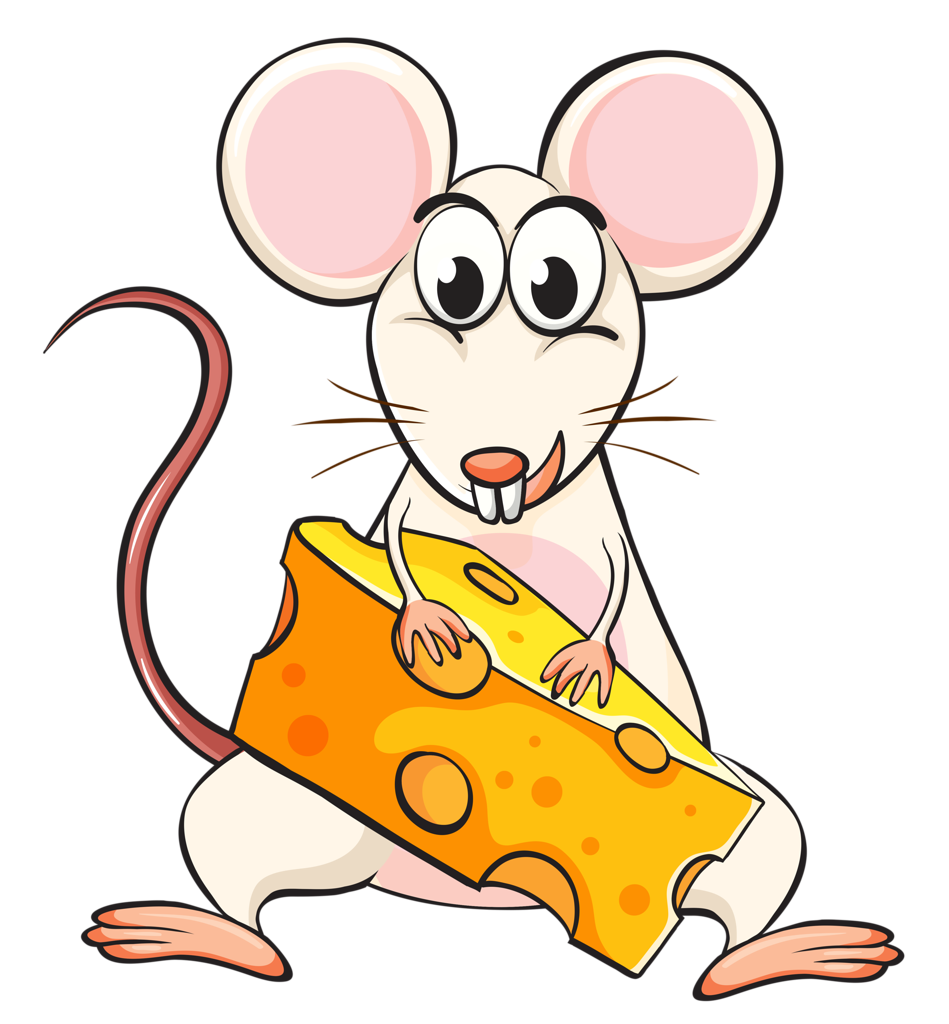 Hamster clipart tooth cute.  png pinterest clip