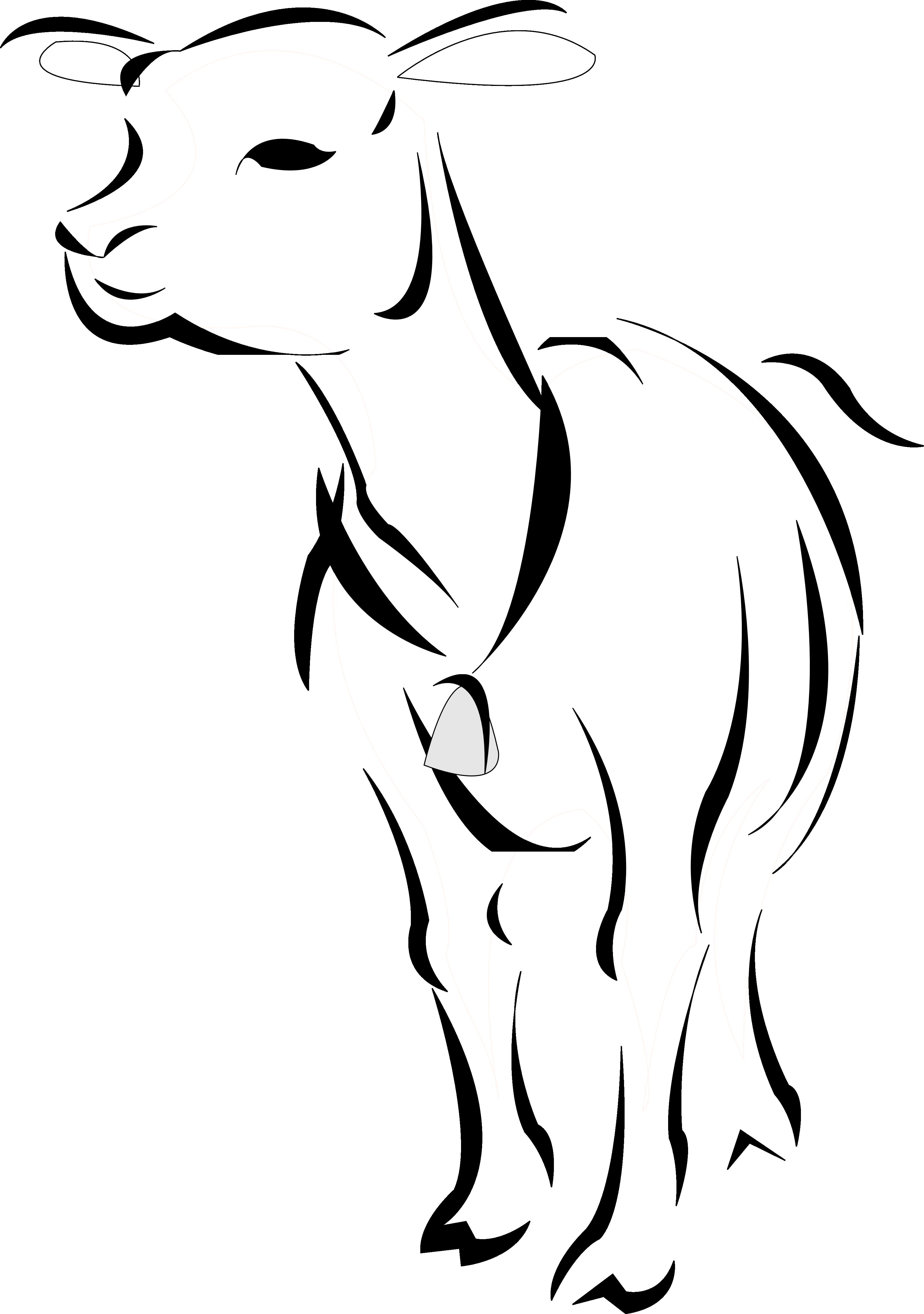 Artfavor lamb panda free. Shy clipart black and white