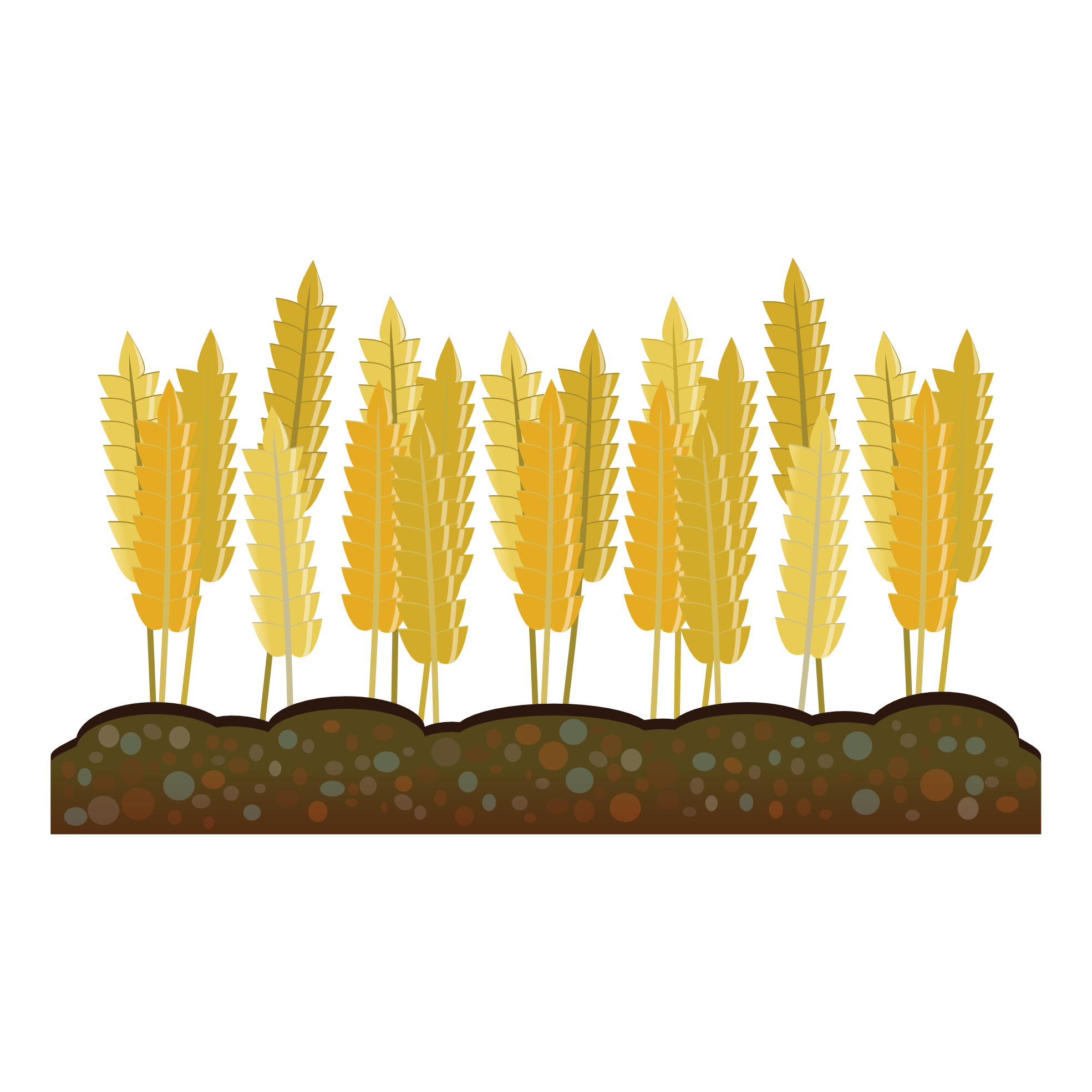 Crops clipart farmer chinese. Crop farm agriculture harvest