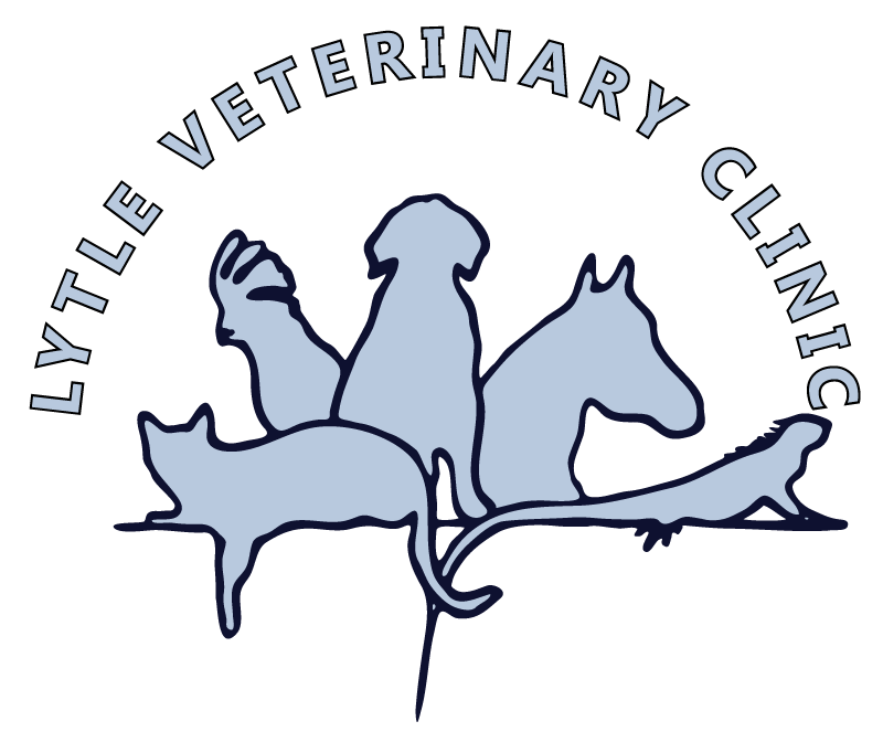 Veterinarian clipart service animal. Lytle veterinary clinic in