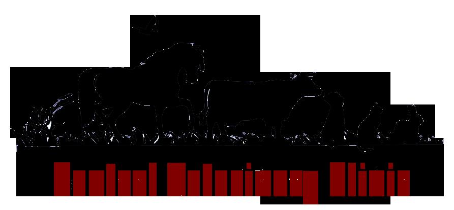 Veterinarian clipart horse. Ponoka alberta veterinary clinic