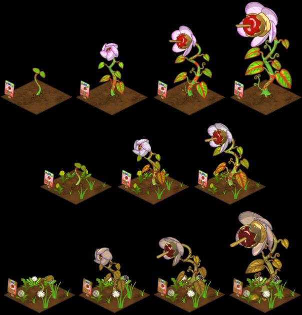 Gardening webkinz insider wiki. Watermelon clipart apple seed