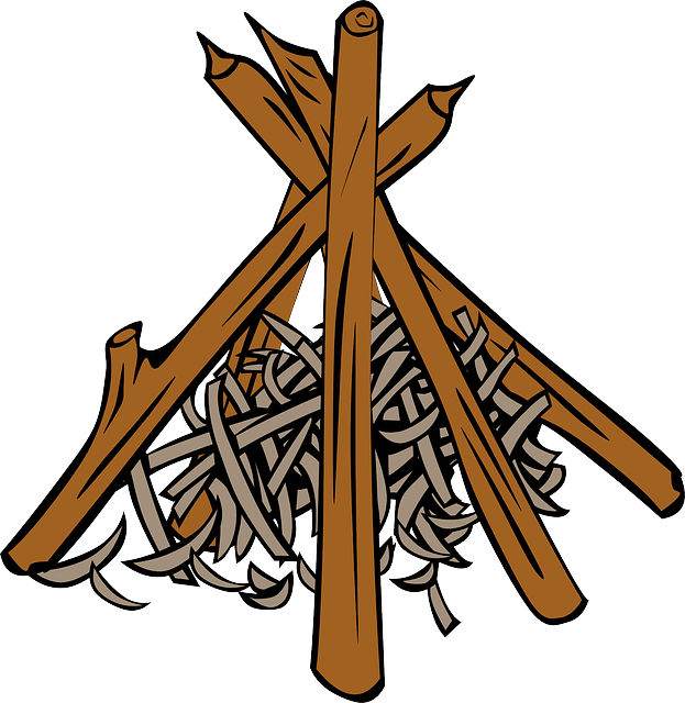 Firewood clipart campfire wood. With practice you will