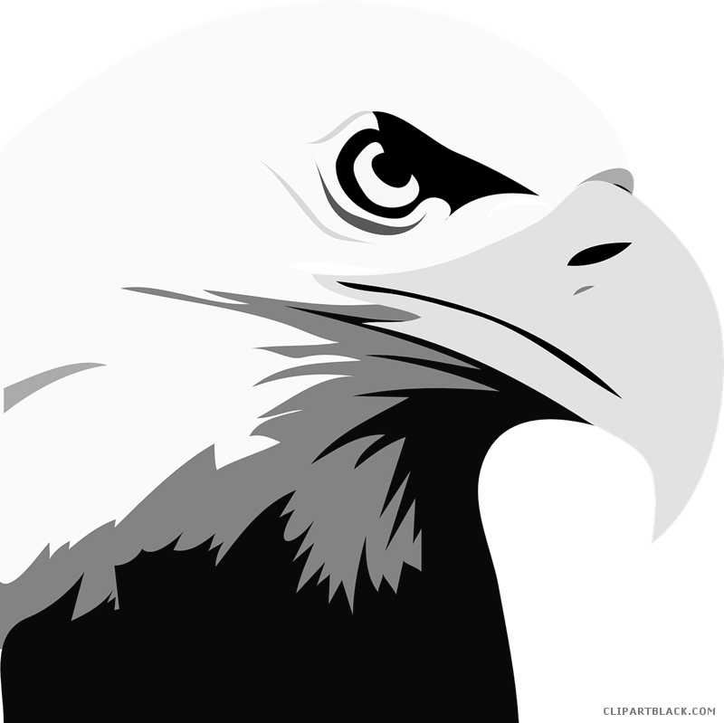Head animal free black. Eagle clipart abstract