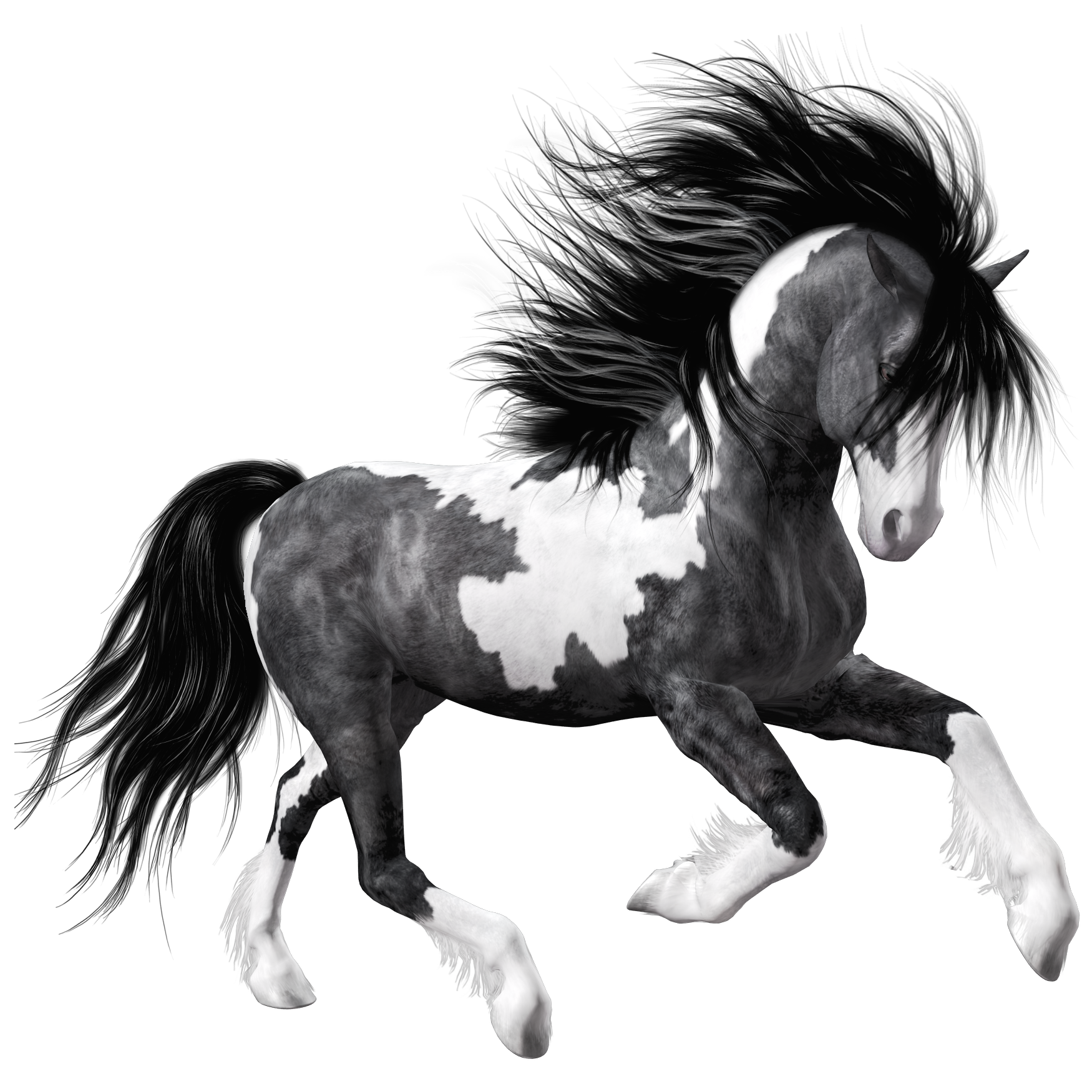 Clipart fire horse. White black png picture