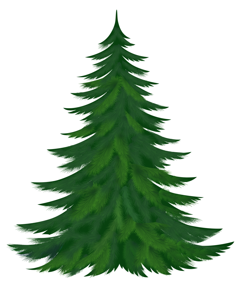 Clipart trees truck. Fir tree silhouette at