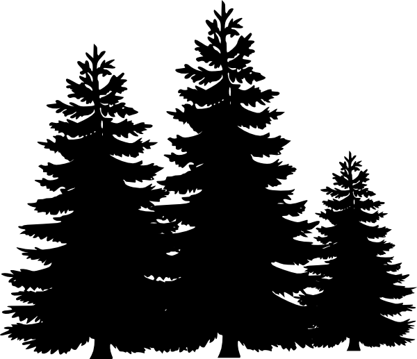 Clipart forest pine tree. Evergreen stencil google search