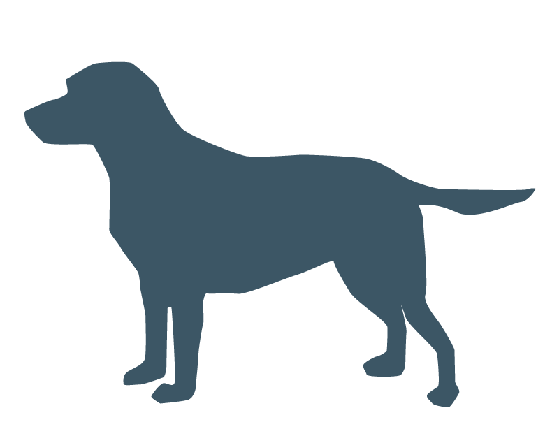Clipart fireworks dog. Dogs and by mara