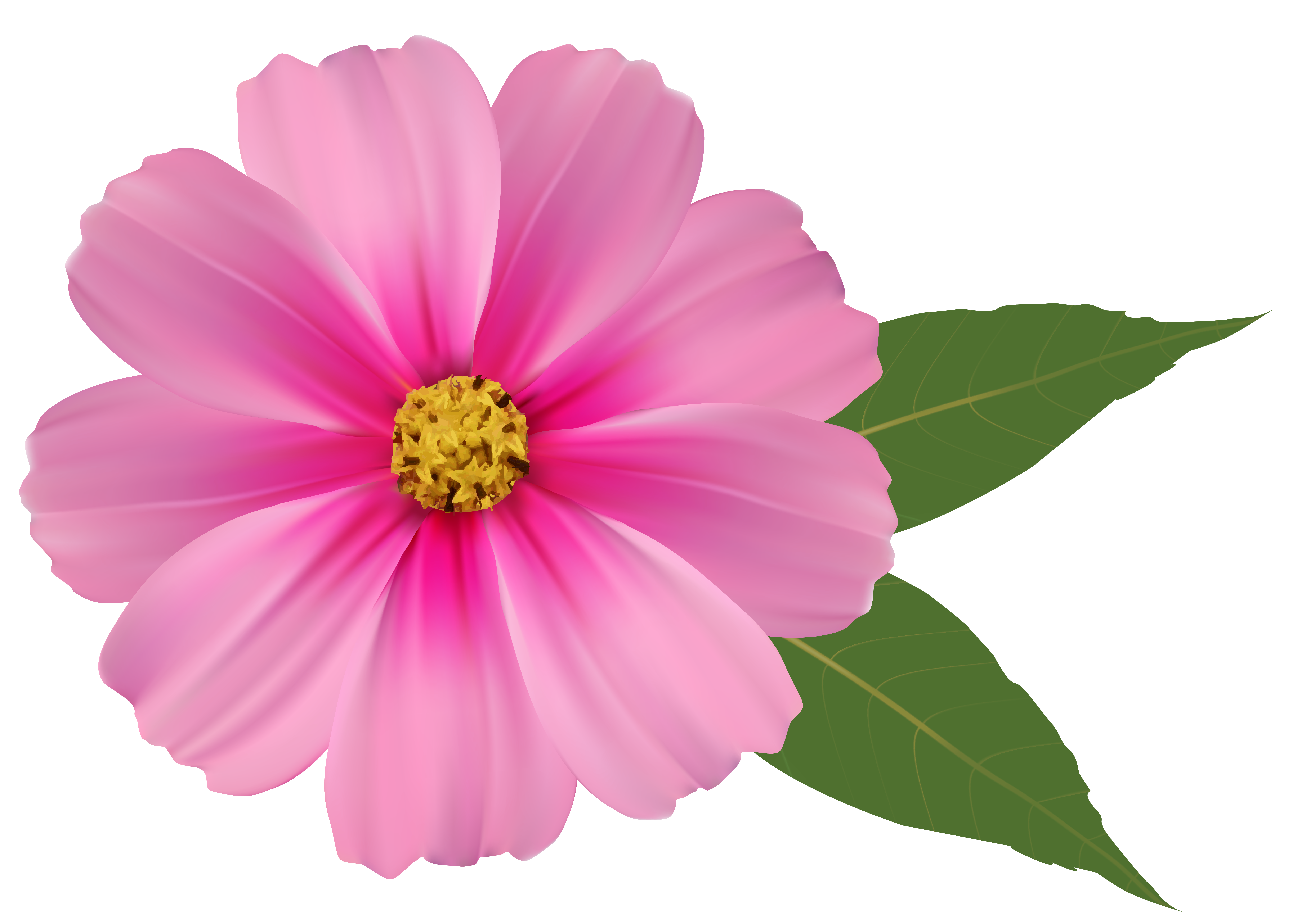 Image clipart gallery yopriceville. Pink flower png