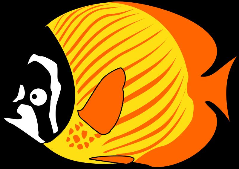 Cartoon clip art tropical. Clipart fish animation