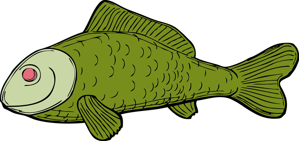 Clipart fish animation. Free stock photo illustration