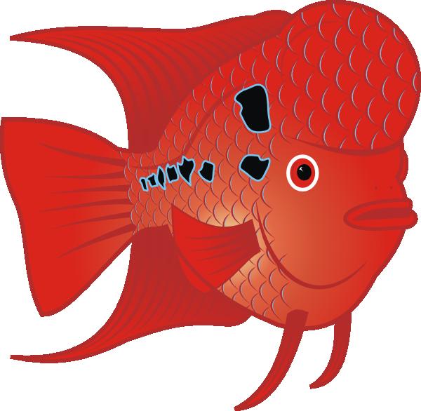 Goldfish clipart sea fish. Flowerhorn clip art at
