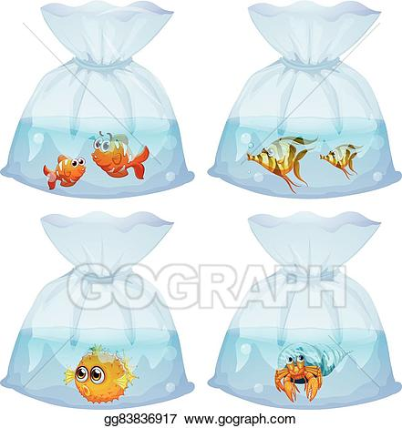 Vector stock different kind. Fish clipart bag