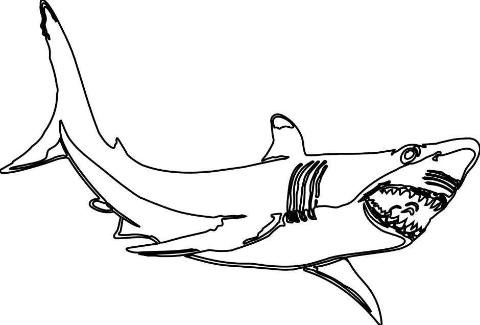 Trout clipart wide mouth bass. Largemouth silhouette at getdrawings