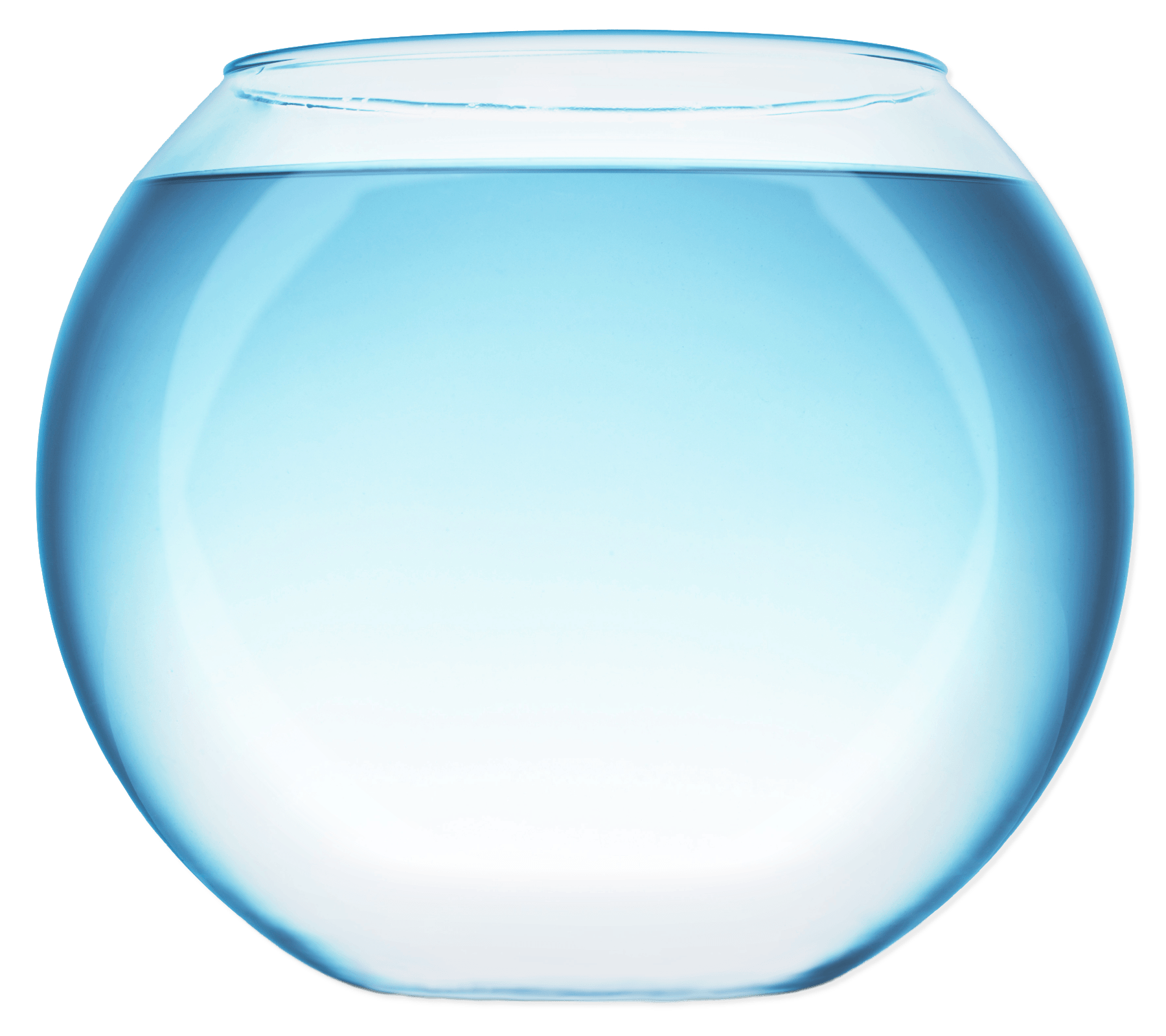 With transparent png stickpng. Clipart fish bowl