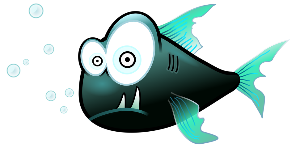 Piranha free stock photo. Tooth clipart fish